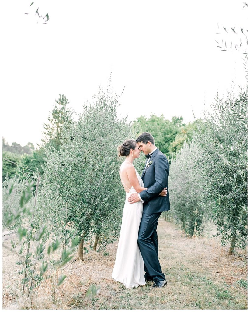 romantic portraits of bride and groom in olive orchard at red ridge farms