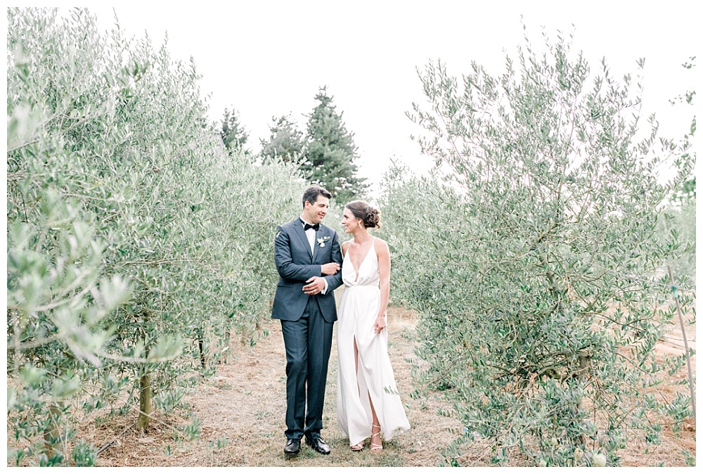 romantic portraits of bride and groom walking toward camera in olive orchard at red ridge farms